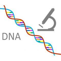 Epigenetics: How to change your genes, your looks & your life