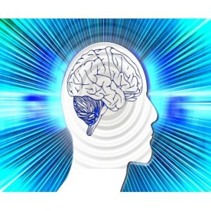 Understand brain development and increase brain capacity