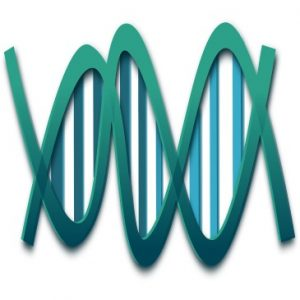 Epigenetics and positive thinking