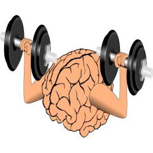 six habits of intelligent people